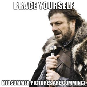 Brace yourself Midsummer pictures are comming! | Brace yourself | Meme Generator