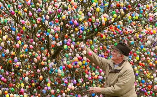 Tree decorated with more than 9000 Easter eggs in Saalfeld, eastern Germany.  Pretty cool!