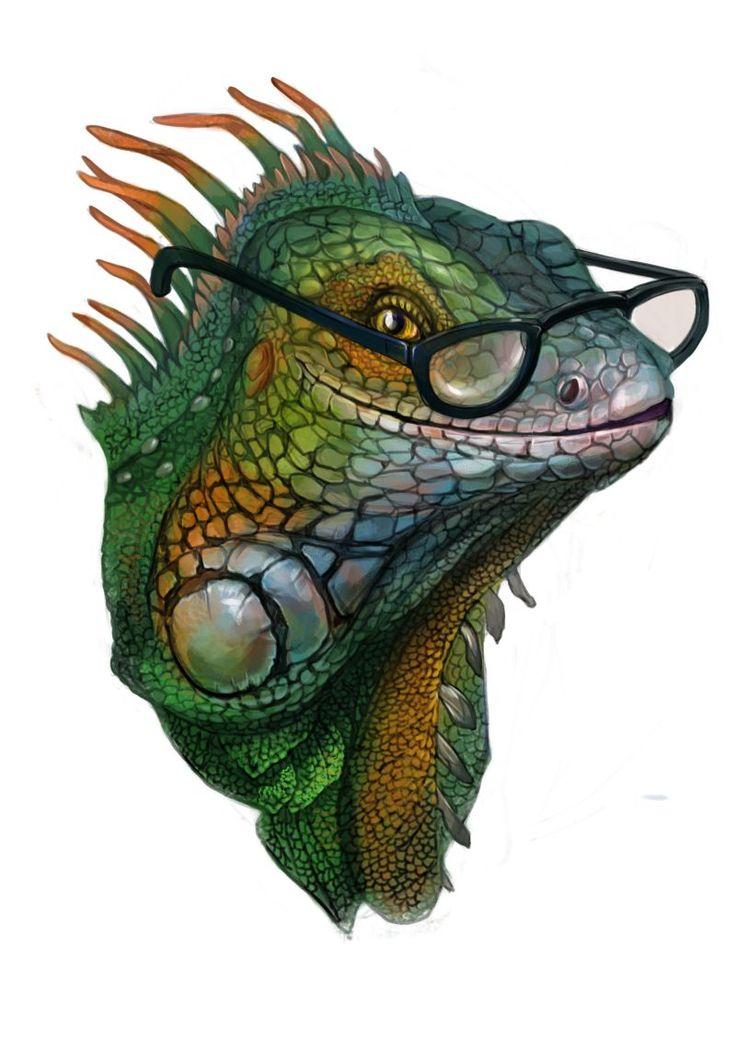 #Illustration  #iguana, #drawing #clothes #print #animals
