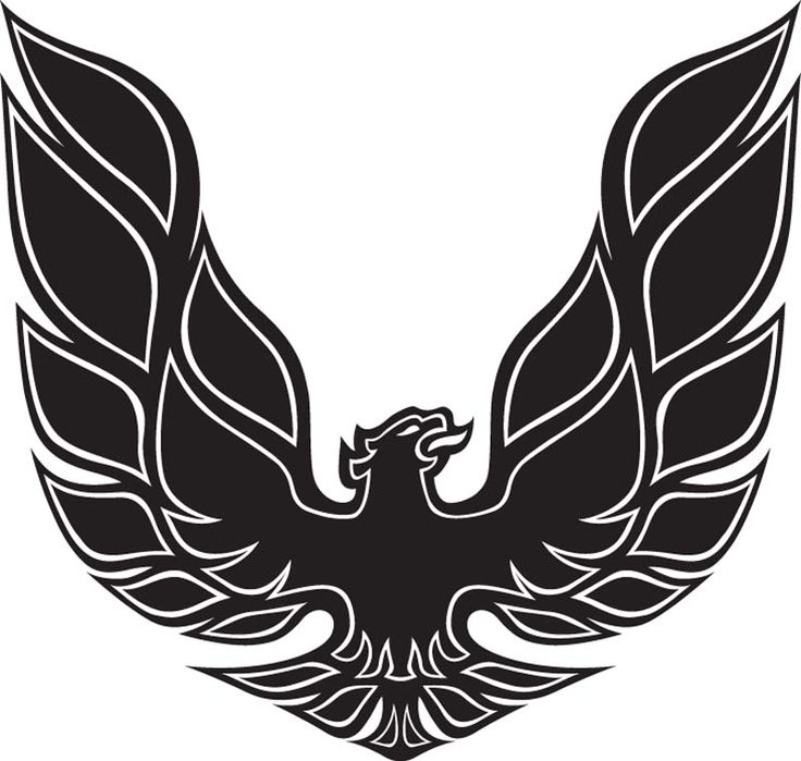Symbol of the Blood Shrike. (yes, I realize it's actually a Pontiac symbol. Just ummmm ignore that for now)