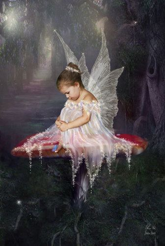 Photo of Moonlight for fans of Fairies. moonlight fairy