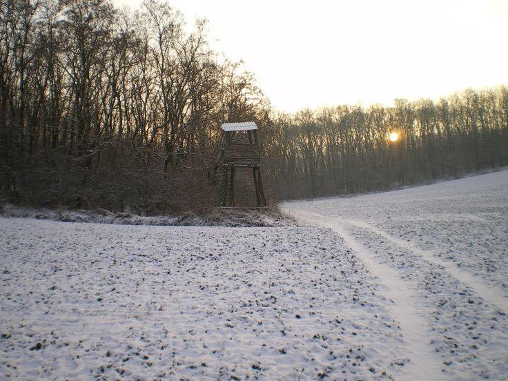 Poľovnícky posed ako vstupná brána do lesa ´07