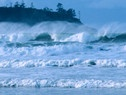 The Pacific Rim, in Tofino, BC, has some of the best surfing in the world, which drew Tess. And that, in turn, drew Sam.
