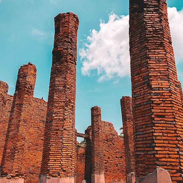 #architecture #asia #ayutthaya #backpacking #bestoftheday #culture #explore #globetrotter #history #instatravel #livingthedream #lovetravel #monument #photography #photooftheday #ruins #temple #thailand #tourism #travel #traveladdict #travelasia #travelblogger #traveldiaries #travellife #travelphotography #traveltheworld #viaje #voyage #world  #Regram via @freelensers