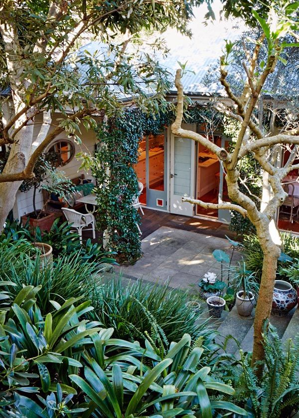 The Sydney home of artist Cressida Campbell