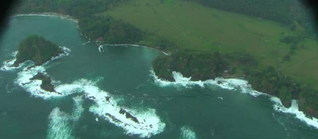Protegen hábitat de la tortuga más grande del mundo en el Chocó