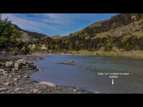 New Zealand River Is Given Same Legal Rights As Humans - YouTube