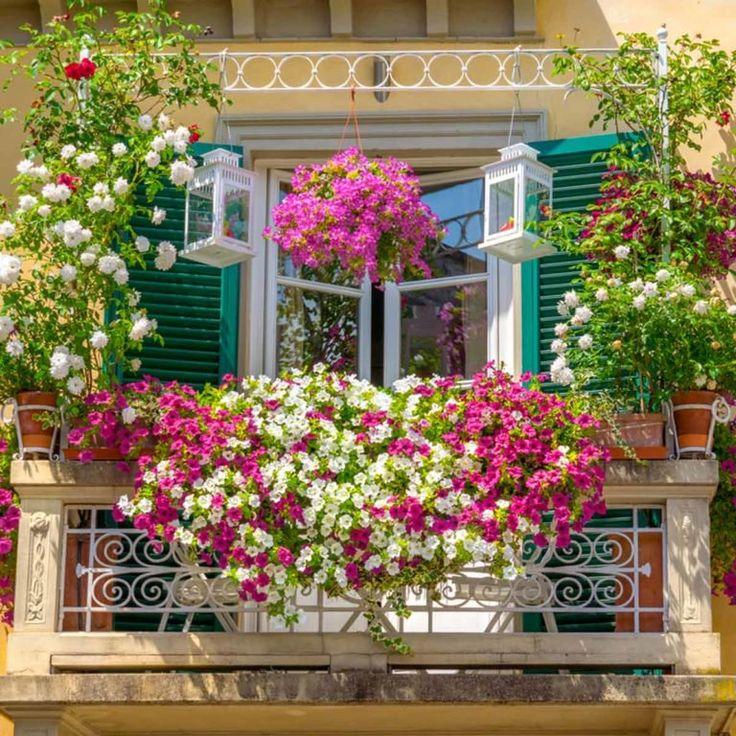 15 Creative Ways To Hang A Plant Outdoors Balcony Garden