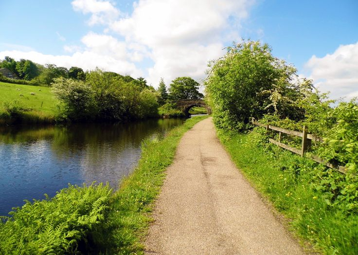 Taken on the Rochdale Canal Between Littleborough and Summit.
