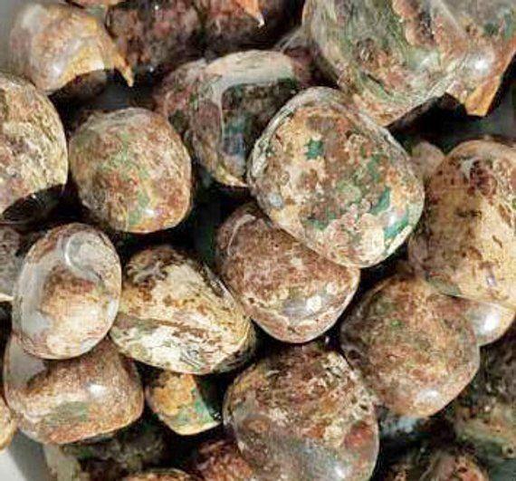 Bulk 1lb Tumbled Leopardskin Jasper Gemstones, Bulk