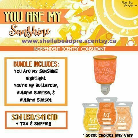 Choose from a variety of cost-saving bundles. Host a Scentsy party to save even more!