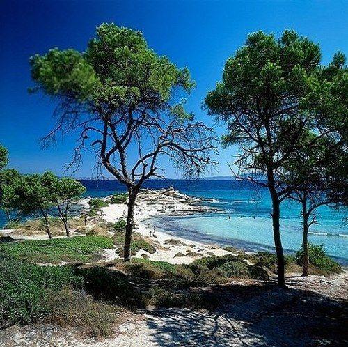 Beach at Sithonia peninsula in Chalkidiki, Macedonia, Greece