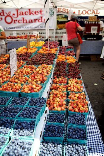 Summer at Union Square Greenmarket, New York City