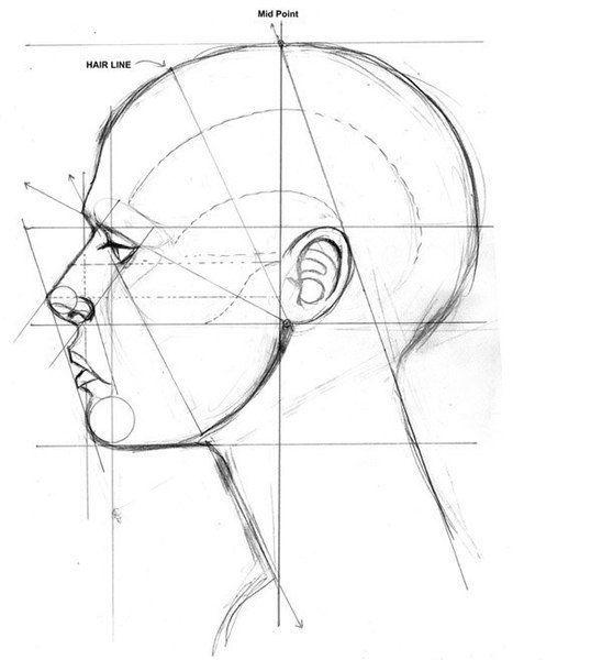 Основные пропорции и линии соединения частей лица. Эти рисунки помогут тебе рисовать пропорциональное лицо.<br>Условимся на том, что размер глаза (его длина) по горизонтали будем обозначать как А, так как это расстояние часто используется в схеме.<br><br>Середина головы — линия глаз.<br>Расстояни..