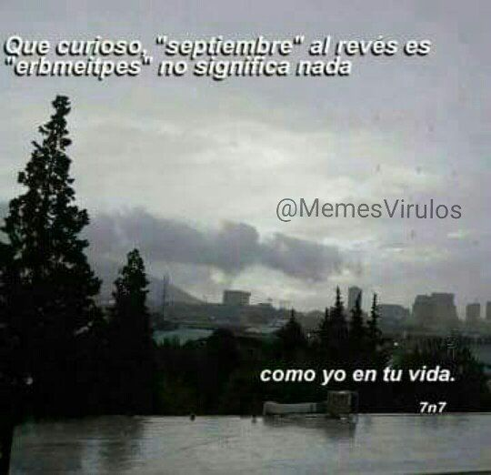 Reposting @memesvirulos: No me mires así 😞 #MemesVirulos • • • • • #chiste #risa #soloenvenezuela #chistes #argentina #humor #humorlatino #moriderisa #colombia #venezuela #meme #risas #peru #memes #ecuador #chistetipico #mexico #panama #venezolanos #lmao #chile #gracioso #hilarious #lima #cdmx #caracas #buenosaires #haha #lmfao
