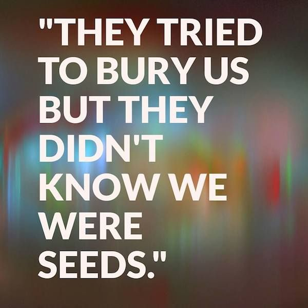 """They tried to bury us but they didn't know we were seeds."" - Mexican proverb"