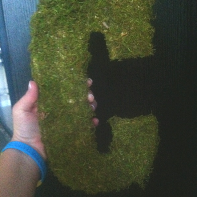 "Moss ""C""s for the entrance doors.: Moss C S, Entrance Doors"