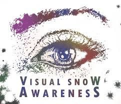 Image result for visual snow images