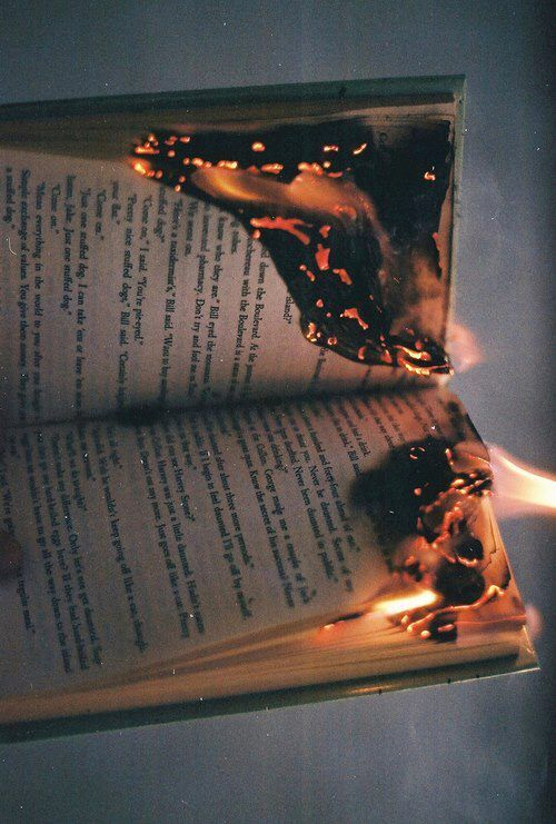 The fire ate at the words, gorged itself on the lives within the pages, tore at the fabric of the worlds between the covers.