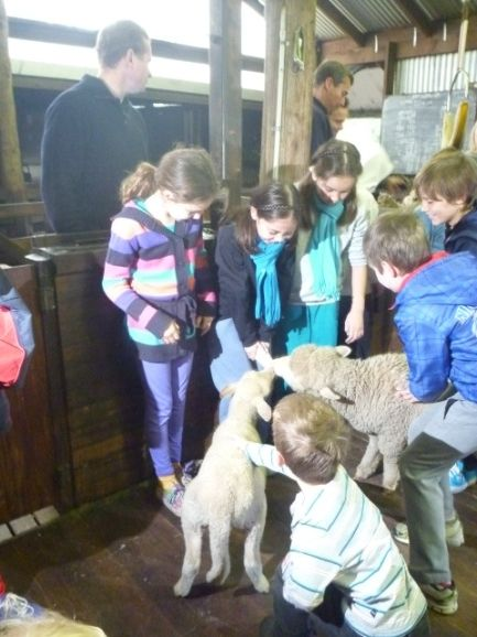 Yallingup Shearing Shed - Things to do with Kids in Margaret River - Blog - No.1 FREE online guide for WA families http://www.buggybuddys.com.au/magazine/read/yallingup-shearing-shed---things-to-do-with-kids-in-margaret-river_422.html