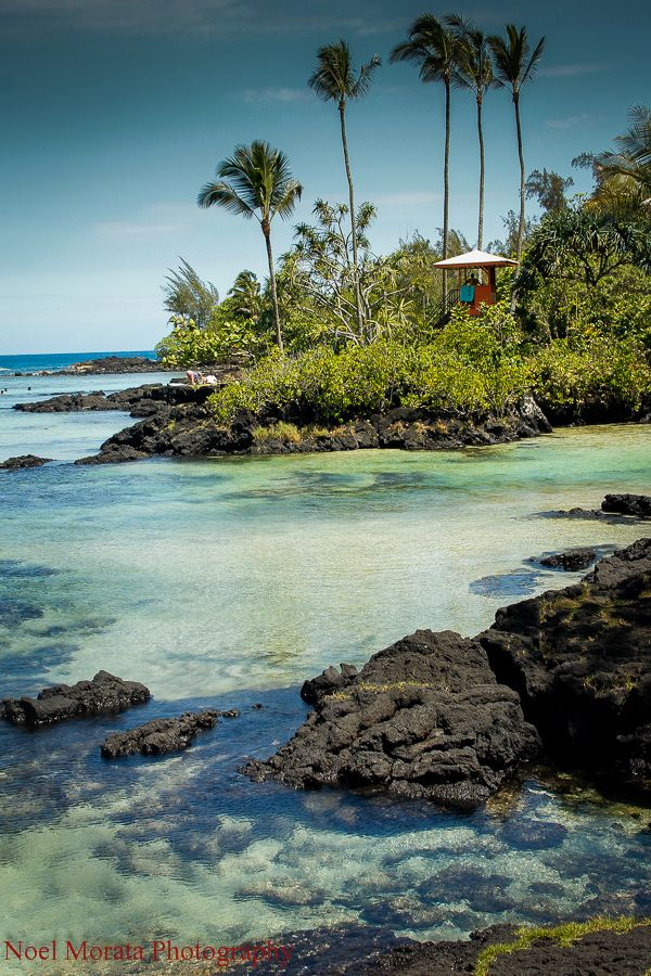 Hilo, Hawaii #Hawaii #BigIsland