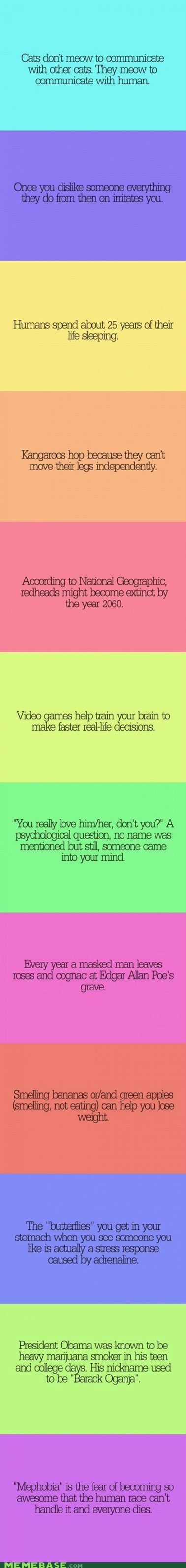 psycho facts « Find For Funny I like the weight one aha