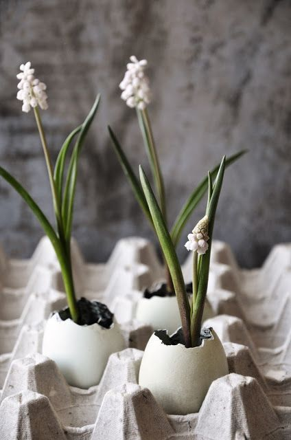 DIY flowers and eggs.