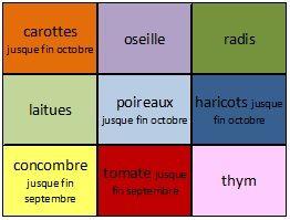 Planche culture 5