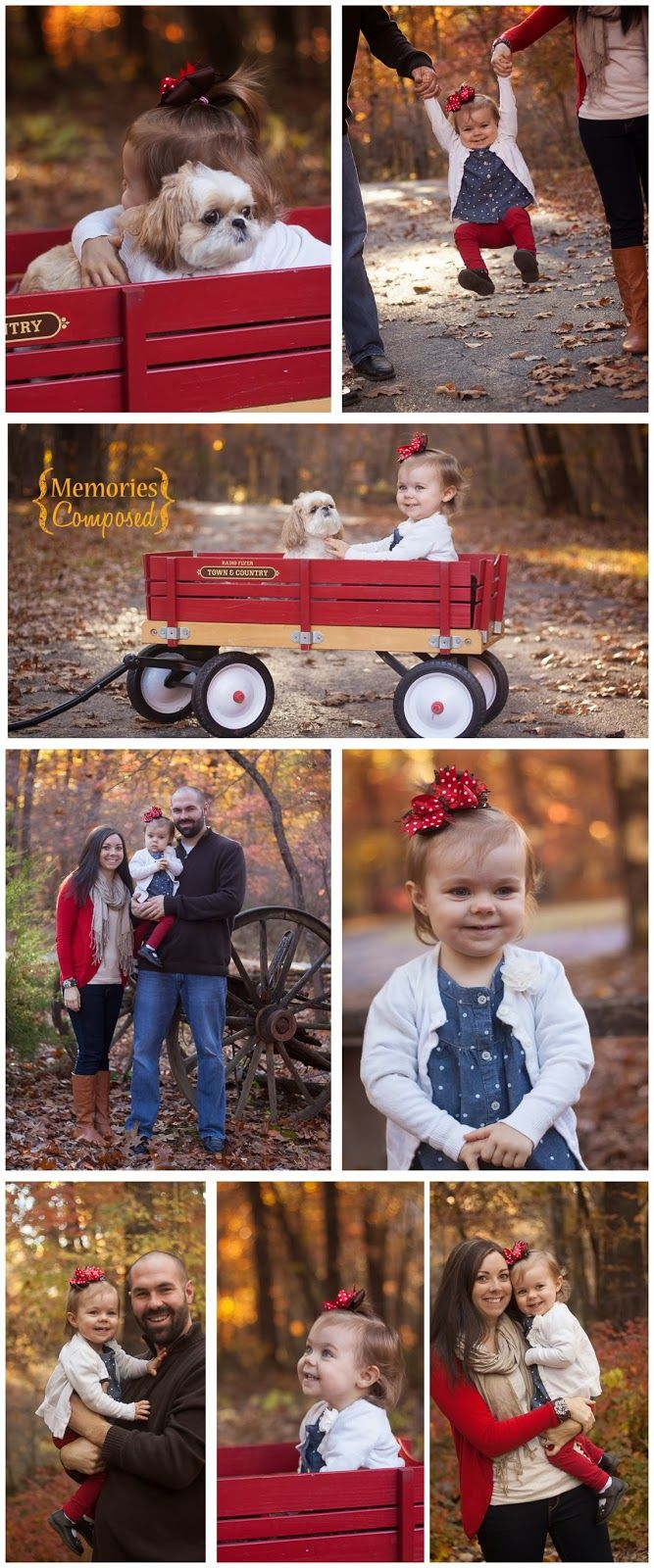 A fun fall family photography session with a sweet toddler.  Bring the family dog along for some adorable shots!!