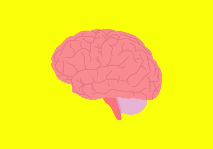 Good News: You've Got a Better Brain Than You Think | TIME http://time.com/4558388/older-learning-brain/