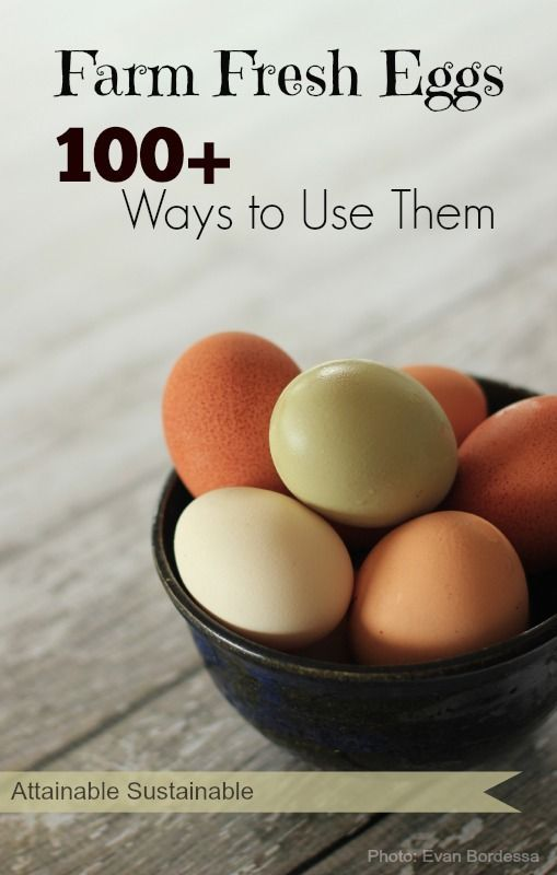 Are your egg-laying chickens leaving you with an overflowing nest box? Here are more than 100 ways to use up your farm fresh eggs. From breakfast to desserts and beyond! #localbite