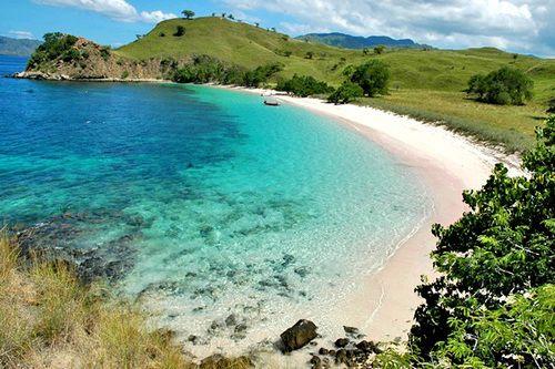 Rinca Island, Flores, Nusa Tenggara Timur, Indonesia