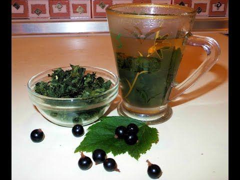 Чай из листьев черной смородины - YouTube