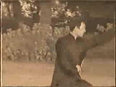 Xing Yi Quan 形意拳 五行拳 十二形拳 - YouTube