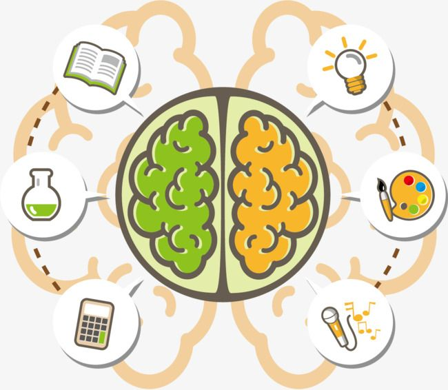 Vector Brain Learns Icon Brain Clipart Vector Brain Png Transparent Clipart Image And Psd File For Free Download Mind Map Art Vector Character Design Brain Logo