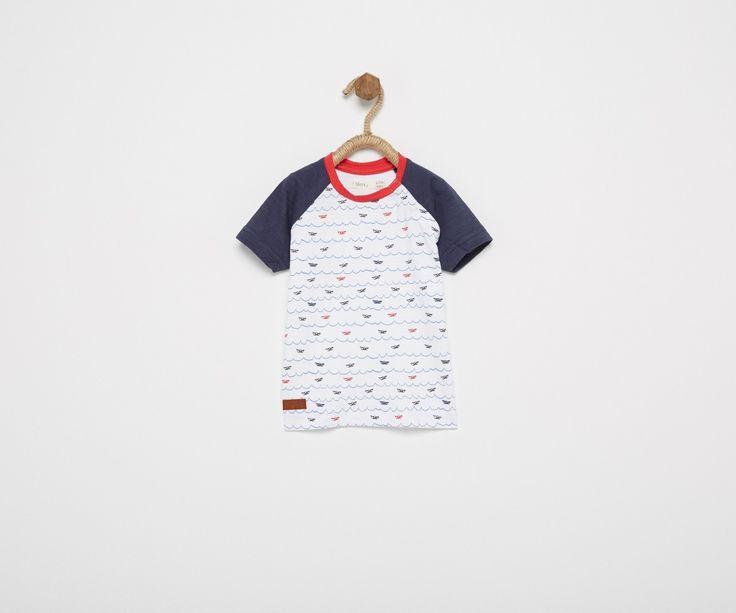 Camisetas y polos | Bebé Niño | SFERA