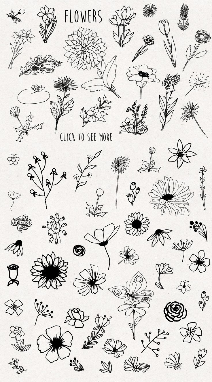 Only Flowers Easy Flower Drawings Easy Doodle Art Flower Doodles