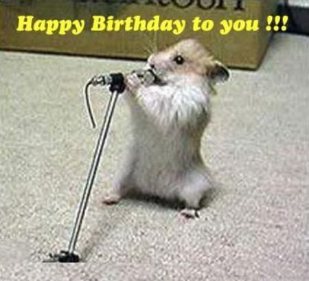 happy birthday funny song. In this meme a mouse sings happy birthday to you song which is very funny.