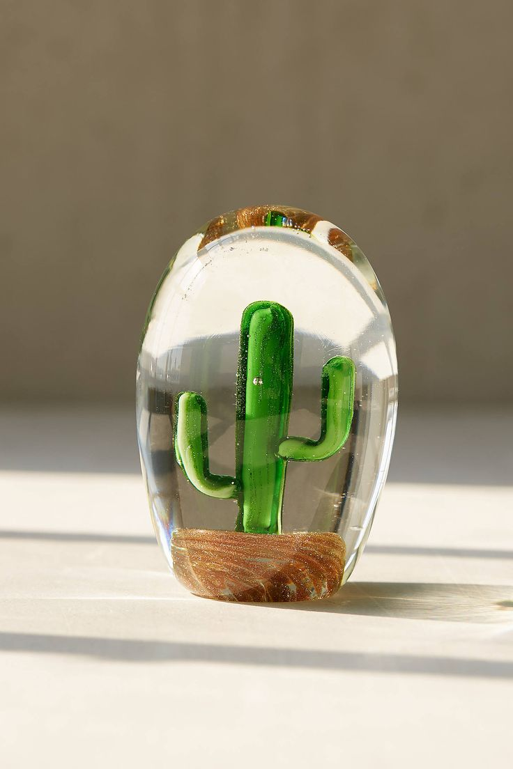 Shop Glass Saguaro Cactus Orb at Urban Outfitters today. We carry all the latest styles, colors and brands for you to choose from right here.