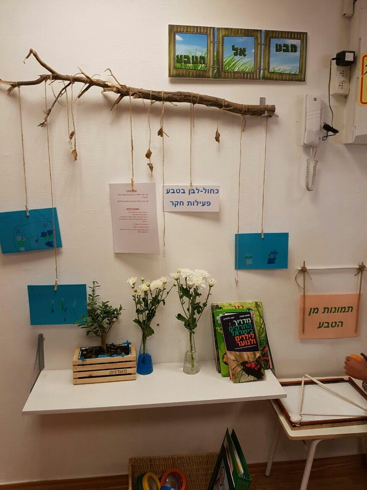 Spring Classroom Decorations ~ Best the curiosity approach images on pinterest day