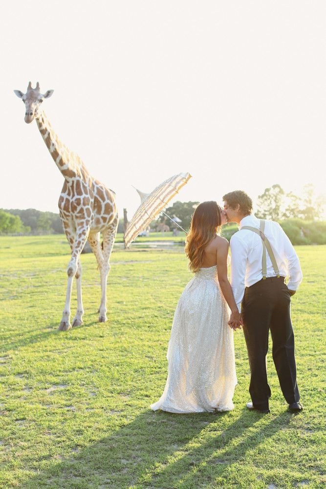 wedding destinations in new jersey%0A Out of Africa and into Six Flags Great Adventure  New Jersey