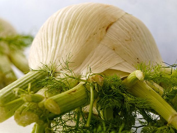 Fennel Seed Essential Oil: Anticipating Spring | Organic Spa Blog |