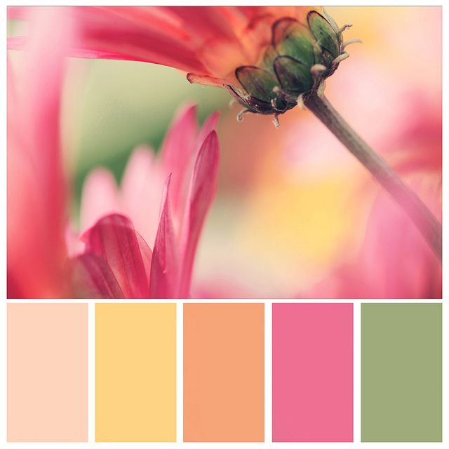 I'm not really a pink person, but I like this combination. Must be the oranges in it that caught my eye.