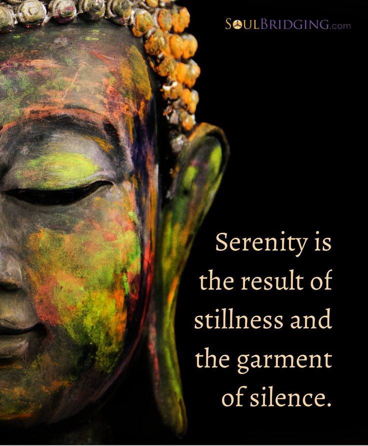 """Serenity is the result of stillness and the garment of silence."""