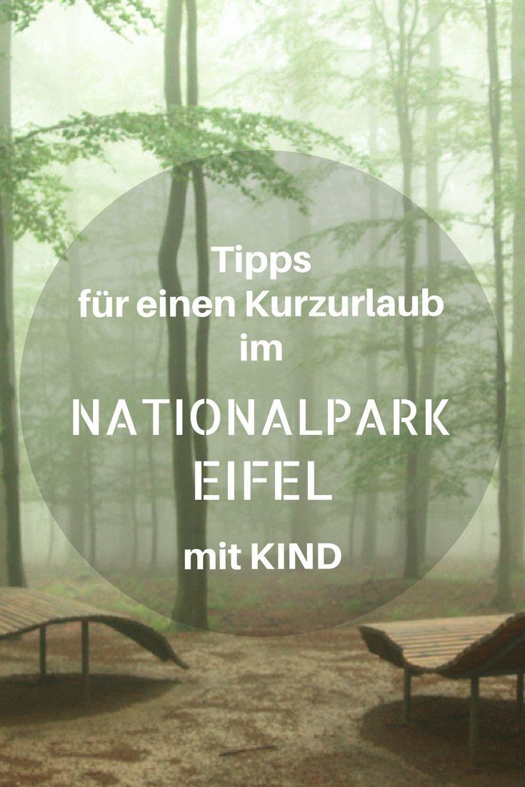Der Nationalpark Eifel ist nur einen Katzensprung von uns entfernt, doch nie bin ich auf die Idee gekommen, diesen Park zu besuchen. Ich möchte herausfinden, was die Eifel alles zu bieten hat und die Ausflugsziele im Nationalpark Eifel mit Kind erkunden. Kurzurlaub Deutschland NRW Eifel.