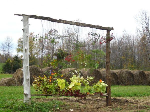 Living Crafts http://www.livingcrafts.com/blog/weaving/an-earth-loom-in-the-garden