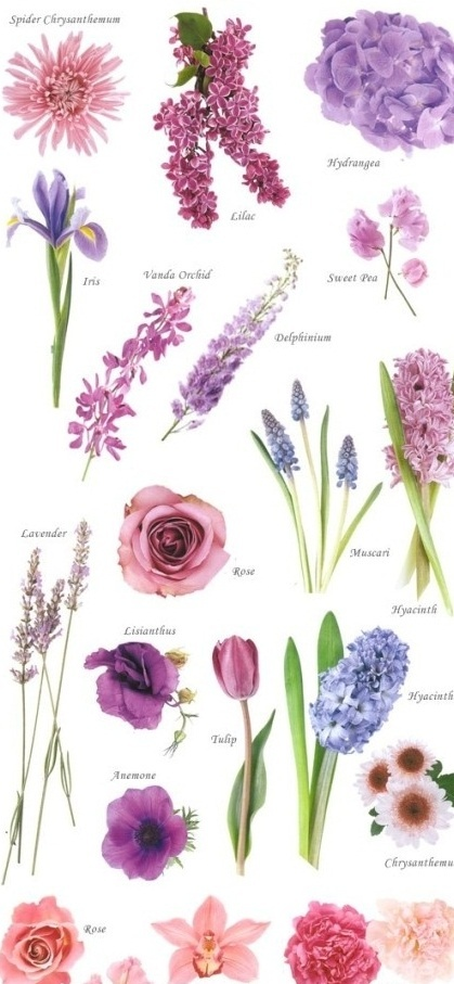 purple flower ideas