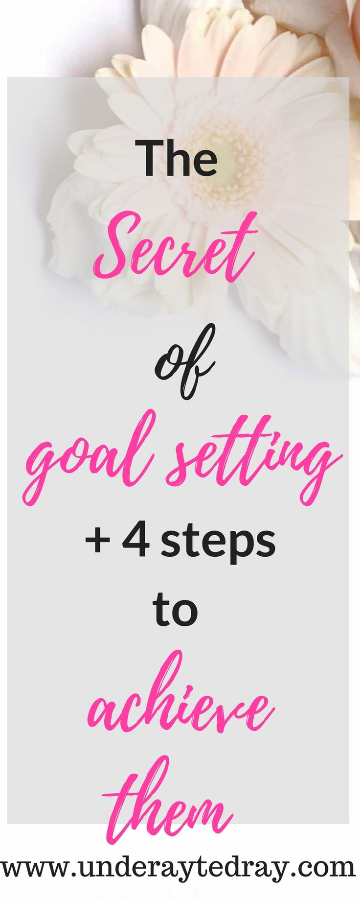 Easy step by step guide to making plans, decision making and execution. #goals  #makemoneyonline #goaldigger #goalsetting #onlinebusiness