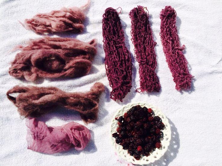 Wol verven met bramen Beitsen met 1 azijn, 2 aluin en 3 aluin en Cream de tartar