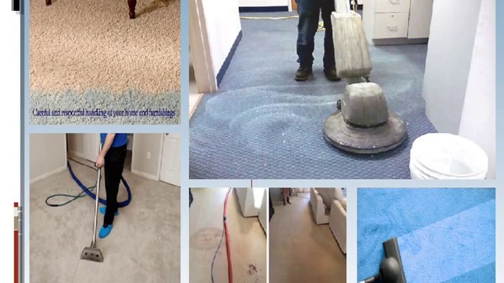 Our carpet Cleaners in homes cleaning businesses for over 15 years. We got plenty of experience and expertise in carpet steam cleaning, carpet dry cleaning,